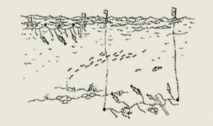 Krokfiske